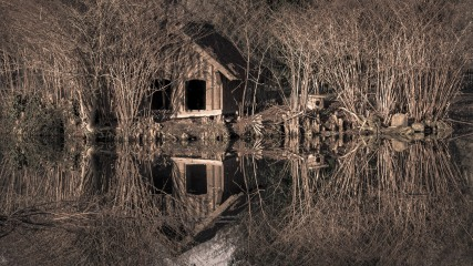 The hut in the trees: A winter view of a hut beside a local lake