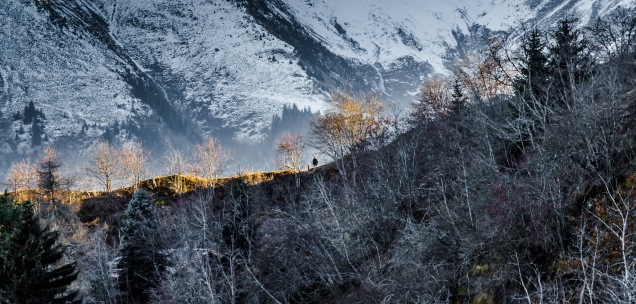 Is there a decision?: A walker in the Swiss Alps