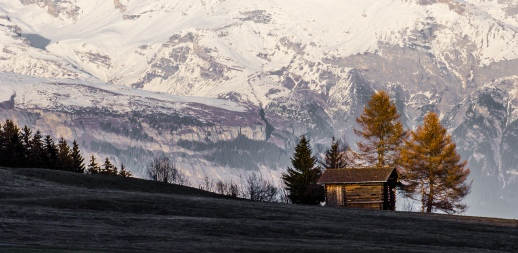 Final glow: The setting sun gives a last glow to trees and a hut. The mountains of the Surselva, Switzerland provide a backdrop.