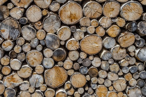 All shapes and sizes but we fit together: A wood pile